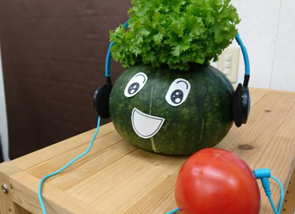 2017年と「しまばら野菜」